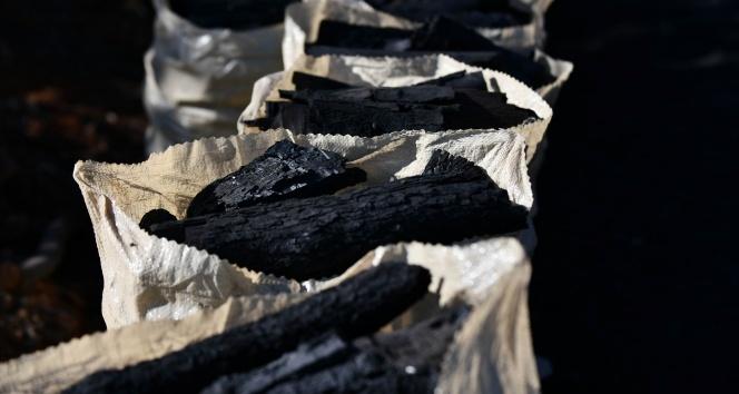 Kömürcüler termik santral istiyor