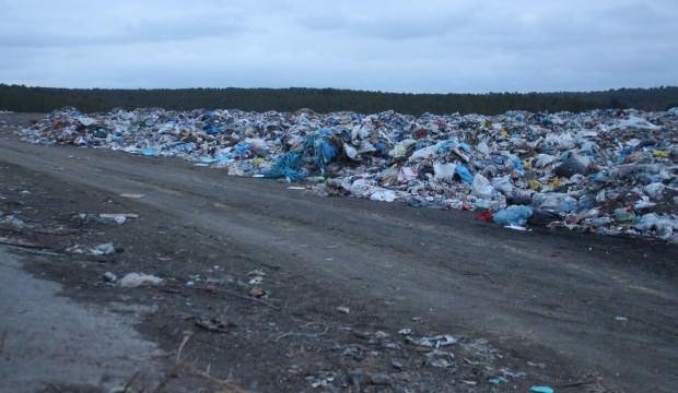 Banaz'da çöplükte 21 köpek ölü bulundu