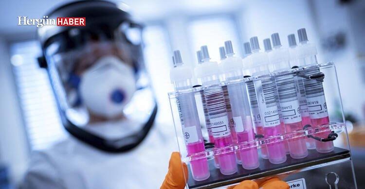 Corona virüs aşısı başarılı oldu! Dünyayı umutlandıran gelişme