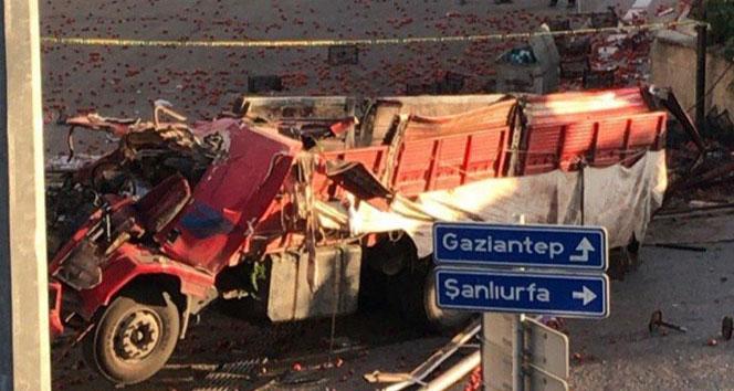 Freni boşalan domates yüklü kamyon köprüden uçtu
