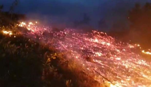 İnegöl'de orman yangını! 10 dönümlük alan küle döndü