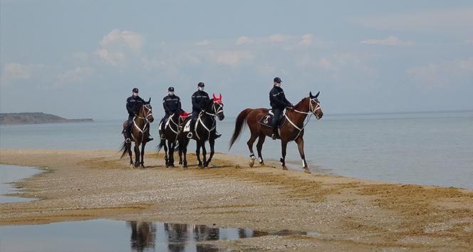 Jandarmanın atlı timlerinden plajlarda denetleme