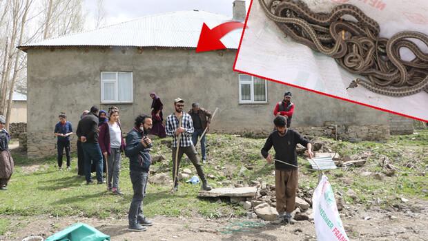 Korktukları için terk ettiler! Evlerinden 20 yılan daha çıktı…