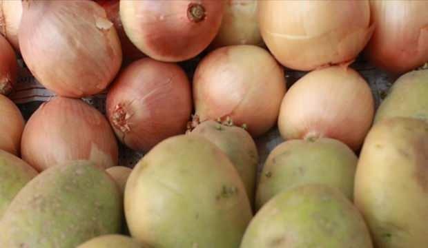 Soğan ve patates üreticisi hasadı durdurdu