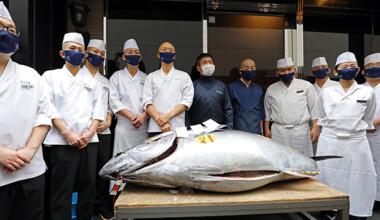 Tokyo'daki balık pazarında geleneksel yeni yıl mezatı